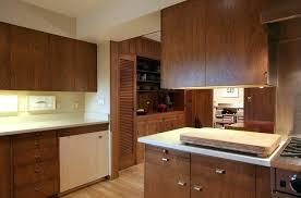 modern cabinet hardware brass kitchen knobs home depot