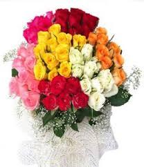 send roses online http www shop2vizag 100 multicolor roses html send roses
