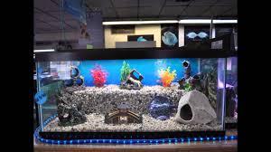 Aquarium Decorations Cool Aquarium For Home Decoration Setup Ideas With Different Types