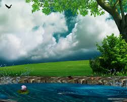 Pretty Plants by Sky Clouds Stock Beauty Water Animals Bright Leaves Atmosphere