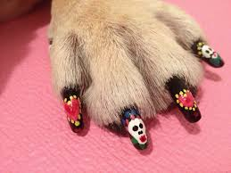 pawdicure polish pens dog nail polish by warren london dog nail art