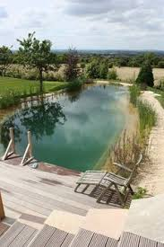 Natural Swimming Pool Natural Swimming Pool Ponds Nsp U0027s Are A Chemical Free Low