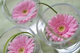 Daisy Centerpiece Ideas by Pictures Of Gerber Daisy Wedding Bouquets