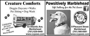 Creature Comforts Pet Sitting Marblehead Ma Pet Sitting Services Marblehead Town Guide