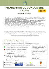 chambre d agriculture 84 calaméo 20100310 fiche concombre 2017