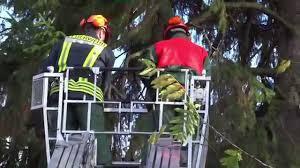 Ffw Bad Doberan E Baum Droht In Bad Doberan Auf Mehrere Häuser Zufallen Youtube