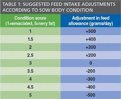 Sow Gestation Table Feeding Guide For Gestating Sows