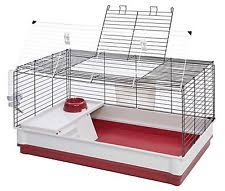 Rabbit Hutch Plastic Midwest Homes For Pets Hoppity Habitat Rabbit Hutch Plastic Wood