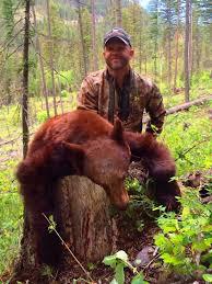 Bears Montana Hunting And Fishing - montana black bear hunts spring bear hunts