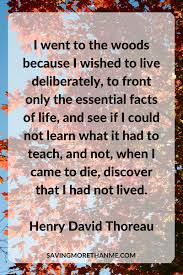 education quotes henry david thoreau cold winter quote d thoreau inspiring quotes and words in life