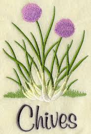 Machine Embroidery Designs For Kitchen Towels by 21 Best Embroidered Herbs U0026 Spices Images On Pinterest Kitchen