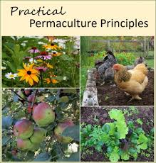 permaculture garden layout permaculture principles for practical gardeners and farmers