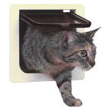 Interior Cat Door With Flap by Pet Doors Dog U0026 Cat Doors You U0027ll Love Wayfair