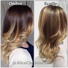 ecaille hair ecaille hair color ombré to ecaille tortoiseshell hair color