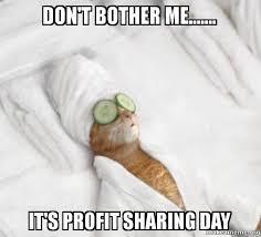 Profit Meme - don t bother me it s profit sharing day pered cat meme