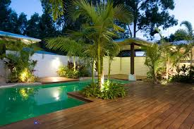 robellini palm vogue other metro tropical pool decorating ideas
