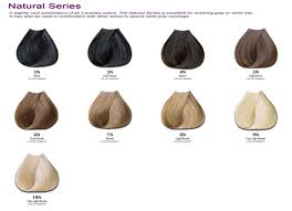 hair color chart hair colour pinterest hair coloring and