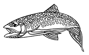 brook trout coloring page 100 images trout coloring page