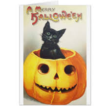 vintage halloween cat greeting cards zazzle