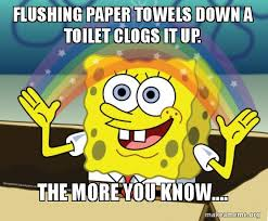 Towel Meme - flushing paper towels down a toilet clogs it up the more you know