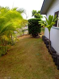 spring cleaning for your landscape ohana lawn service