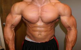 The Best Way To Build by Muscle And Fitness Best Way To Build Muscle Fast