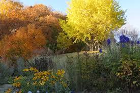 mn landscape arboretum thanksgiving u2013 a pastor u0027s heart
