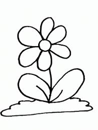 columbine flowers coloring pages u0026 coloring book