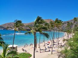 Hawaii exotic travelers images Most searched travel destinations affordable around the world png