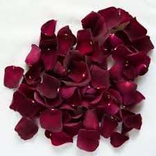 dried roses burgundy freeze dried petals petals roses