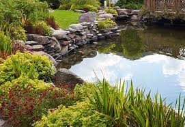 How To Build A Fish Pond In Your Backyard Tips On Seasonal Care For Fish Ponds And Water Gardens At The Home