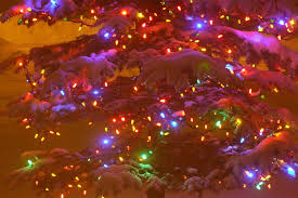 outdoor christmas light clips canada burned out noma led christmas lights ivany