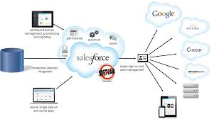Access Database Developer Identity Developer Force Com