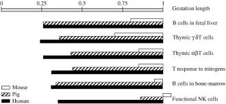 Sheep Gestation Table Prenatal Stress Fetal Imprinting And Immunity Sciencedirect