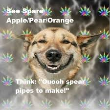 Stoner Dog Meme Generator - image 175364 stoner dog know your meme
