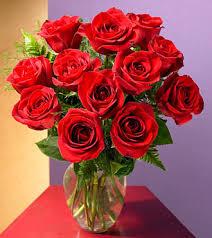 cheap flowers to send flowerstoall send flowers online flowers flowers flower flower