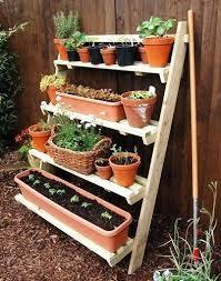 Garden Setup Ideas Herb Garden Setup Uses Of Salt That Never Heard Before