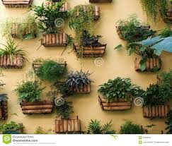 Hanging Wall Planters Wall Planters Stock Images Image 198874