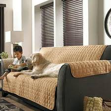 contemporary living room with tan beige soft micro suede couch
