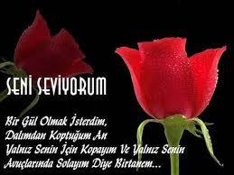 türkische liebessprüche mit übersetzung foren türkische sprache türkisch lernen und übersetzen