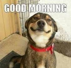 Cute Good Morning Meme - good morning by caddap meme center
