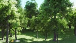 real trees ii trinity3d