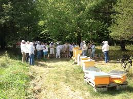 addison county beekeepers association archives addison county