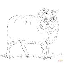 sheep coloring free printable coloring pages