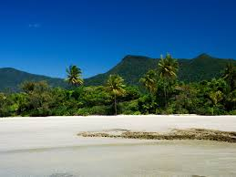 The Beach House Cape Tribulation by Cow Bay Destination Information Queensland