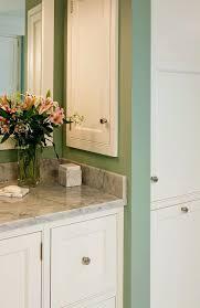 Bath Medicine Cabinets Clever Recessed Bathroom Medicine Cabinet Recessed Medicine