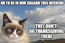 grumpy cat thanksgiving imgflip