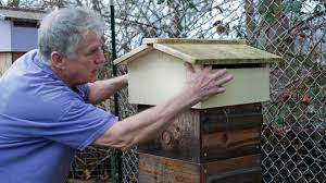 in the moment bill wood beeologique owner and backyard beekeeper