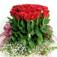 100 Roses Delivery Of Baskets To India Cakes Gifts To India Same Day