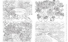 drawntogarden from concept to reality a garden designer u0027s journey